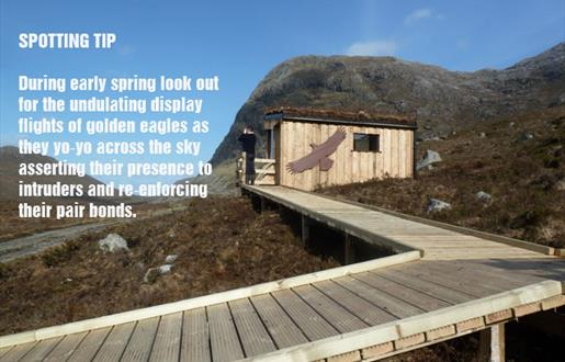 Bird of Prey Trail - North Harris Eagle Observatory