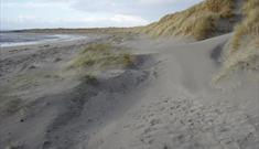 Liniclate Beach and Machair